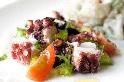 salada-de-polvo