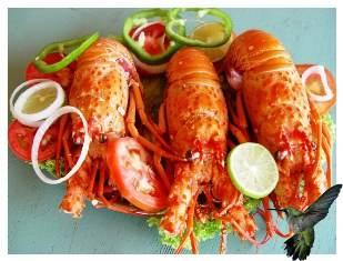 lagosta-ao-alho-e-oleo